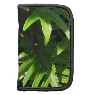 Verde tropical planificadores