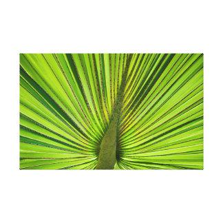 Verde tropical impresión en lienzo estirada
