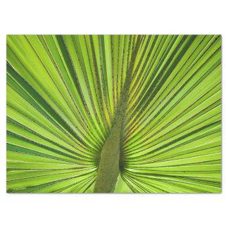 Verde tropical papel de seda grande