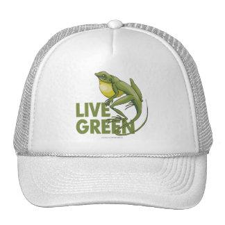 Verde vivo gorras de camionero