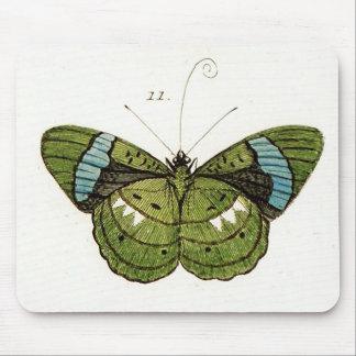 Verde y cojín de ratón del ejemplo de la mariposa  tapete de ratón