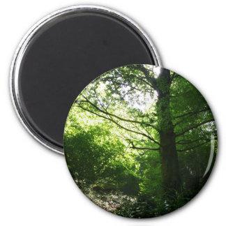 Verde y luz imán redondo 5 cm