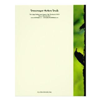 Verde y negro de Treecreeper Plantilla De Membrete