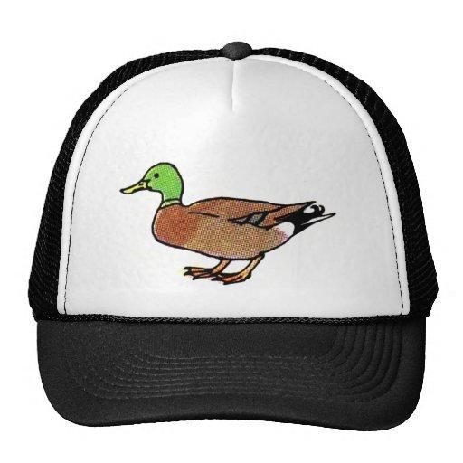 Verde y pato de Brown Gorro