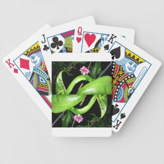 verde y rosado negros baraja de cartas
