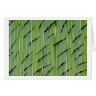 Verdes de bambú tarjeton