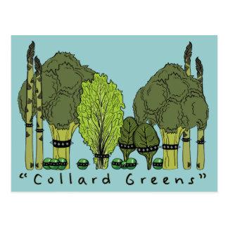Verdes de la col com n del núcleo duro tarjetas postales