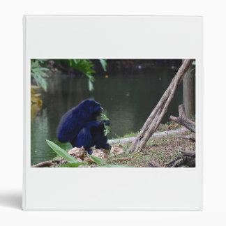 Verdes de la consumición del primate en el borde d