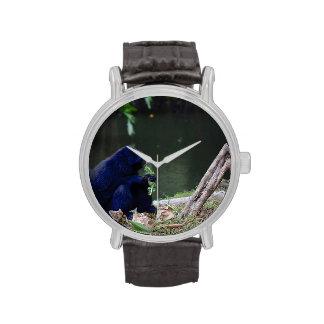 Verdes de la consumición del primate en el borde d relojes