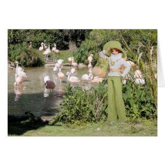 Verdi, Flamingos at the Houston Zoo Greeting Card