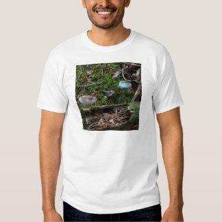 verdigris agaric tee shirt