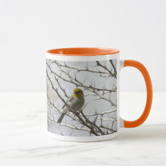 Verdin in a Prickly Perch Mug