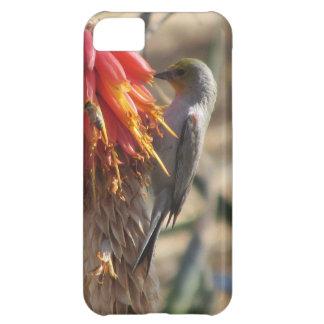 Verdin on Aloe Blossom iPhone 5C Cover