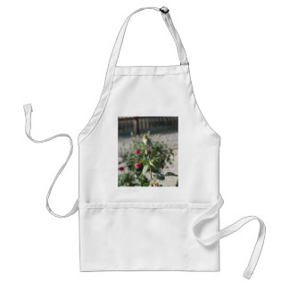 Verdin on Rosebud Adult Apron