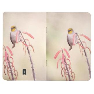 Verdin perched on penstemon journal
