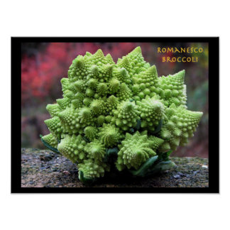 Verdura del bróculi de Romanesco Póster