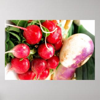 Verduras de raíz póster