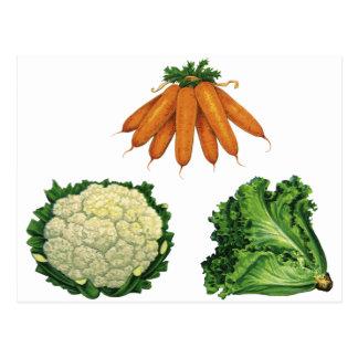 Verduras del vintage; Zanahorias, coliflor, Postal