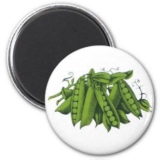 Verduras sanas de la comida del vintage, guisantes imán redondo 5 cm