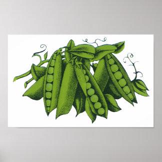 Verduras sanas de la comida del vintage, guisantes poster