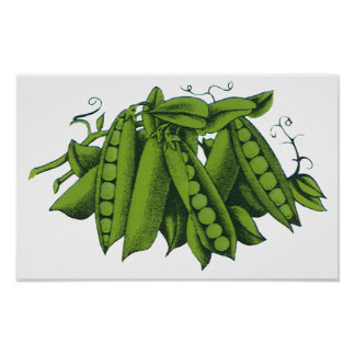 Verduras sanas de la comida del vintage, guisantes póster