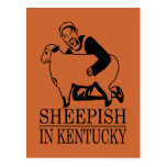 Vergonzoso en Kentucky Tarjetas Postales