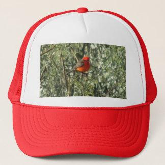 Vermilion Flycatcher Hat