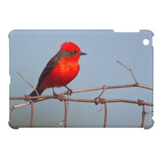 Vermilion Flycatcher (Pyrocephalus Rubinus) iPad Mini Case