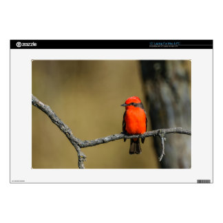 """Vermillion Flycatcher Accessories and Gifts Decal For 15"""" Laptop"""