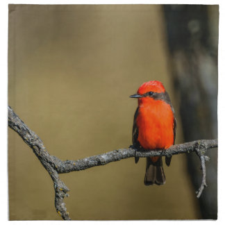 Vermillion Flycatcher Accessories and Gifts Napkin