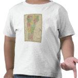Vermont 8 camisetas