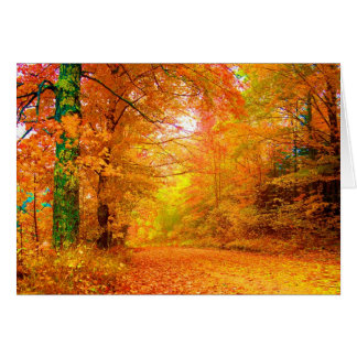 Vermont Autumn Nature Fine Landscape Greeting Card