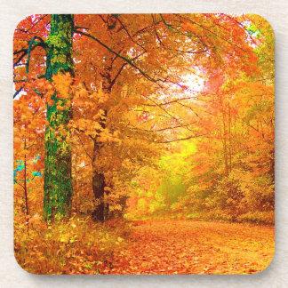Vermont Autumn Nature Landscape Beverage Coasters