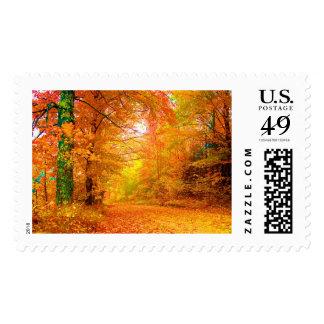 Vermont Autumn Nature Landscape Stamp
