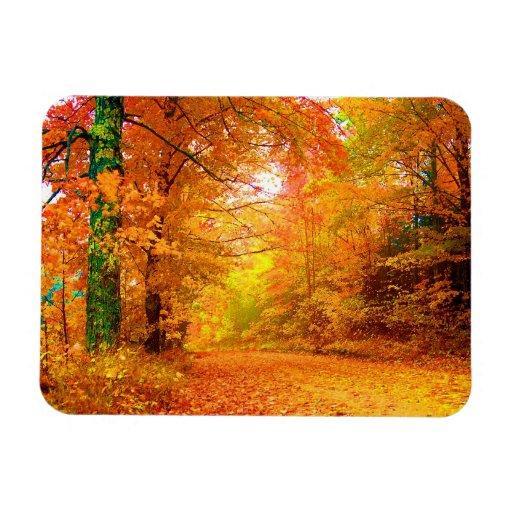 Vermont Autumn Nature Landscape Rectangle Magnet