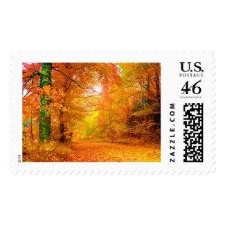 Vermont Autumn Postage Stamp