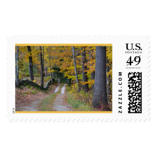 Vermont Country Path Postage Stamp