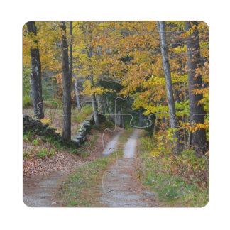 Vermont Country Road Puzzle Coaster