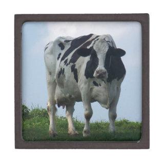 Vermont Dairy Cow Gift Box