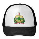 Vermont Flag Theme 00 Trucker Hat