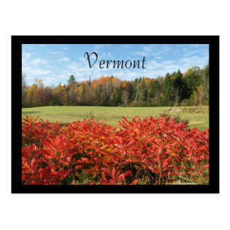 Vermont in Color Postcard