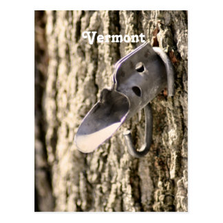 Vermont Maple Tapping Post Card