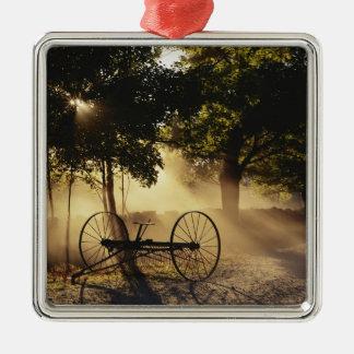 Vermont, Northeast Kingdom, Sunlight falling Christmas Tree Ornament