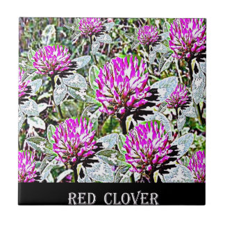 Vermont Red Clover Ceramic Tile