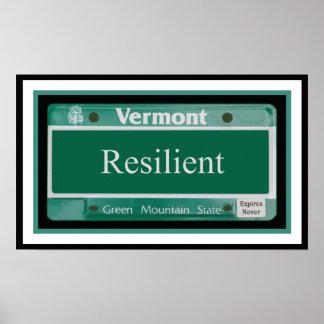 Vermont - resistente póster