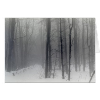 Vermont Snowy Woods holiday card