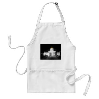 Vermont State House At Night Adult Apron