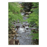 Vermont Stream Stationery Note Card