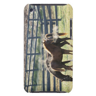 Vermont, USA iPod Touch Case-Mate Case