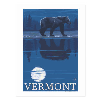 VermontBear in the Moonlight Postcard